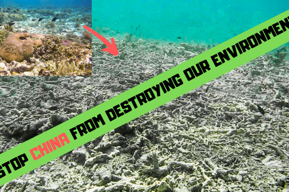 stop china from destroying our environment