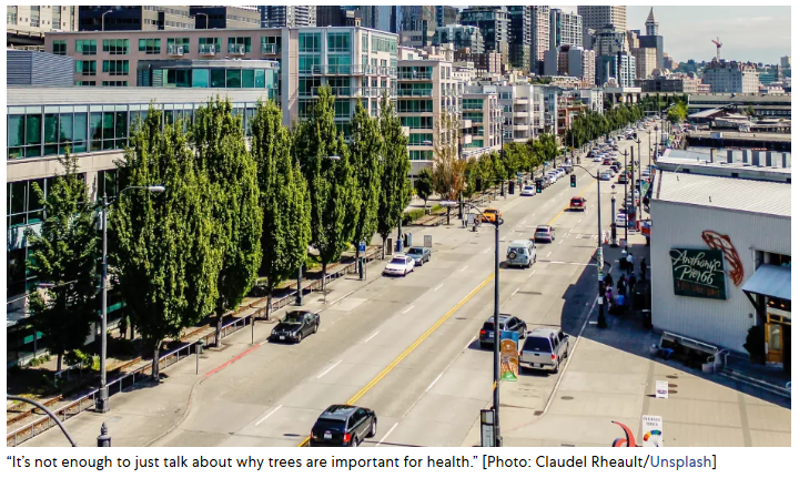 Cities Should Think About Trees As Public Health Infrastructure