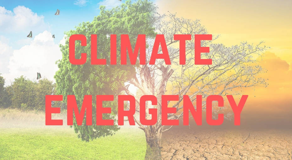 We are on a Climate Emergency
