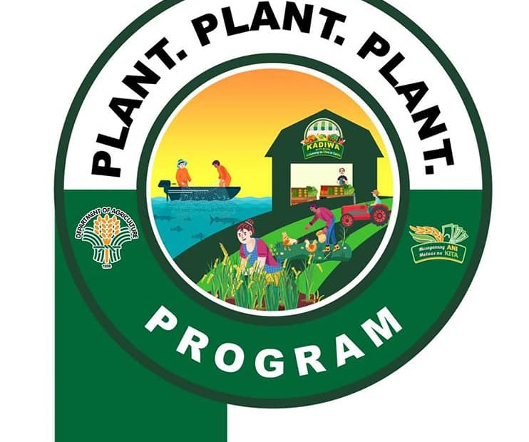 Plant, Plant, Plant Program in Nueva Viscaya