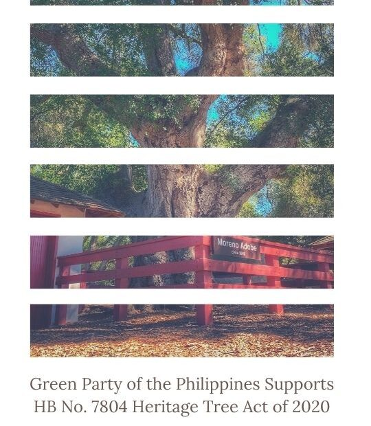 Green Party of the Philippines Supports HB No. 7804 Heritage Tree Act of 2020